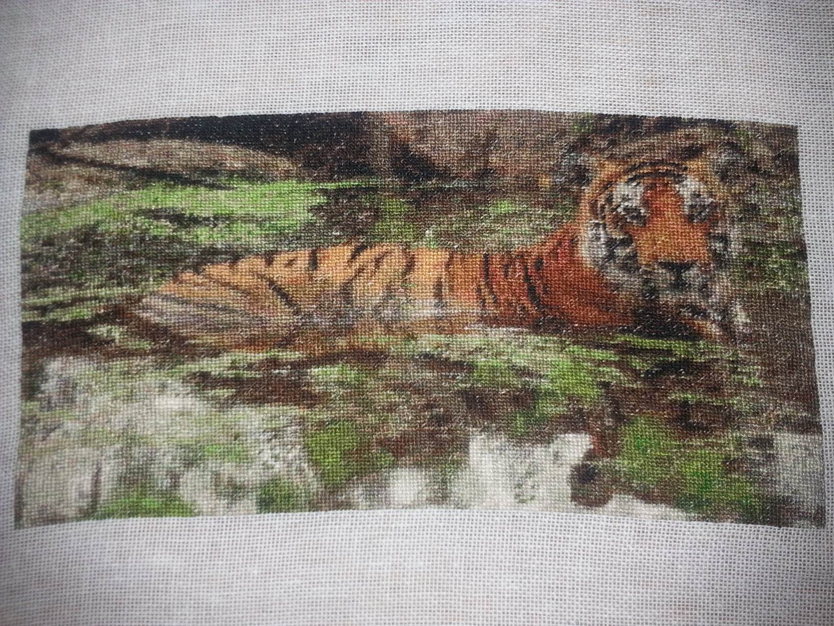 Tiger in Waterhole Small Completed Project