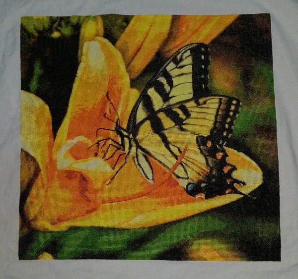 Butterfly-Z