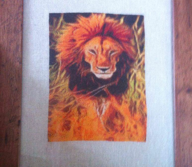 Lion Glow by Diane Frith