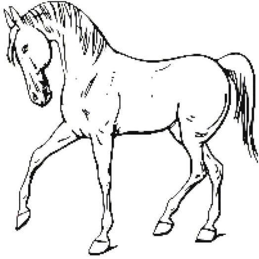 Walking Horse Outline Cross Stitch Pattern