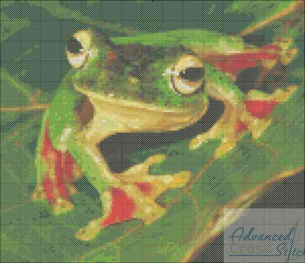 Gliding Frog Cross Stitch Pattern