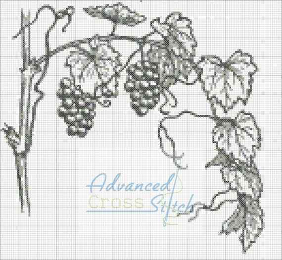Grapevines Cross Stitch Pattern