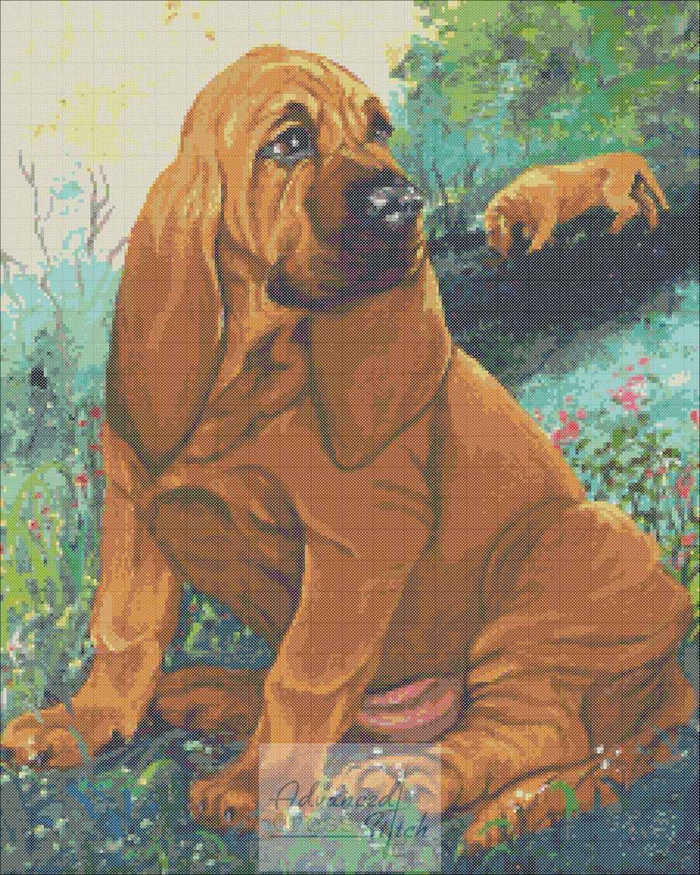 Red Bloodhound Cross Stitch Pattern