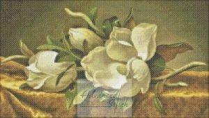 White Flowers Fresh Cut