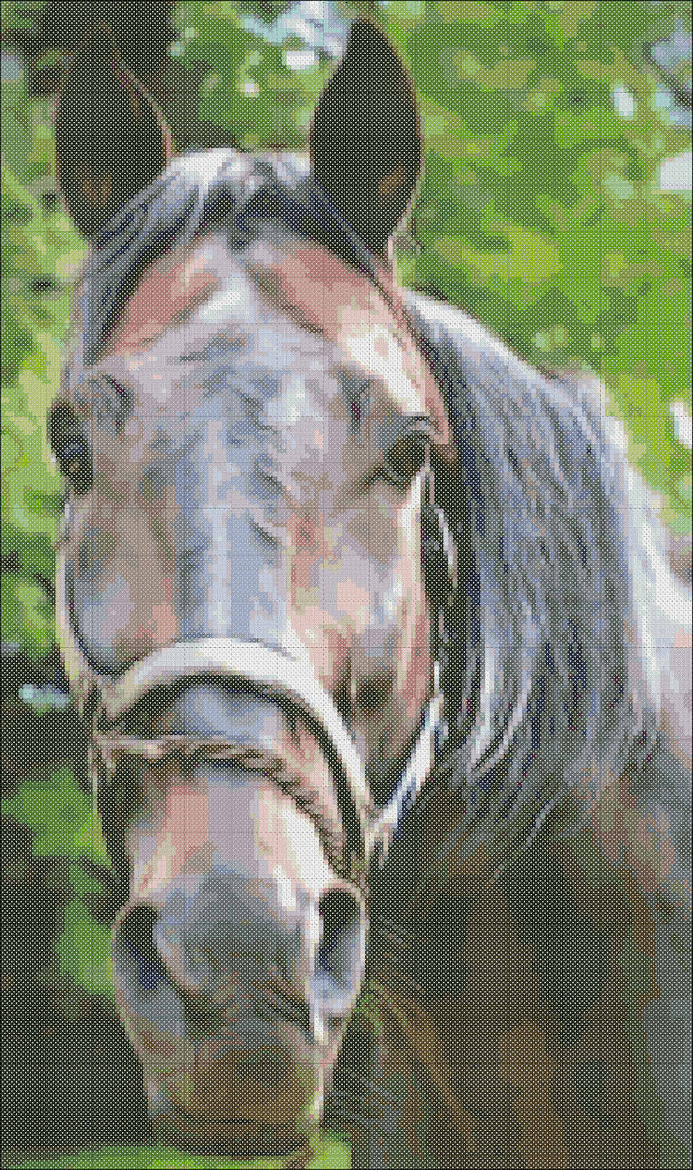 Horse Face Cross Stitch Pattern