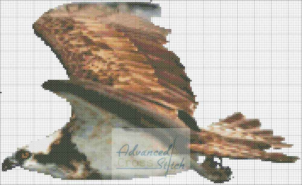 Osprey Cross Stitch Pattern