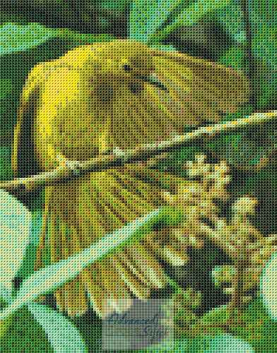 Yellow Browed Bulbul Cross Stitch Pattern