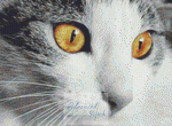 Eyes of Cat Cross Stitch Pattern