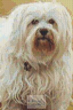 Fury Dog Cross Stitch Chart