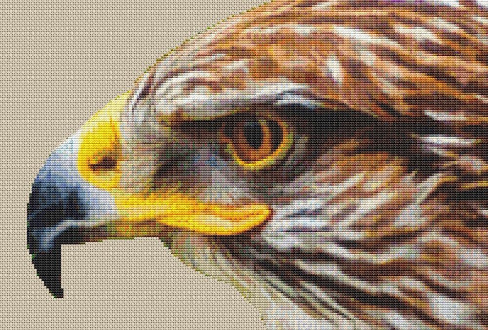 Hawk 2 Blank Background Cross Stitch Pattern